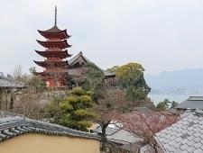 Miyajima Travel Daisho In Temple